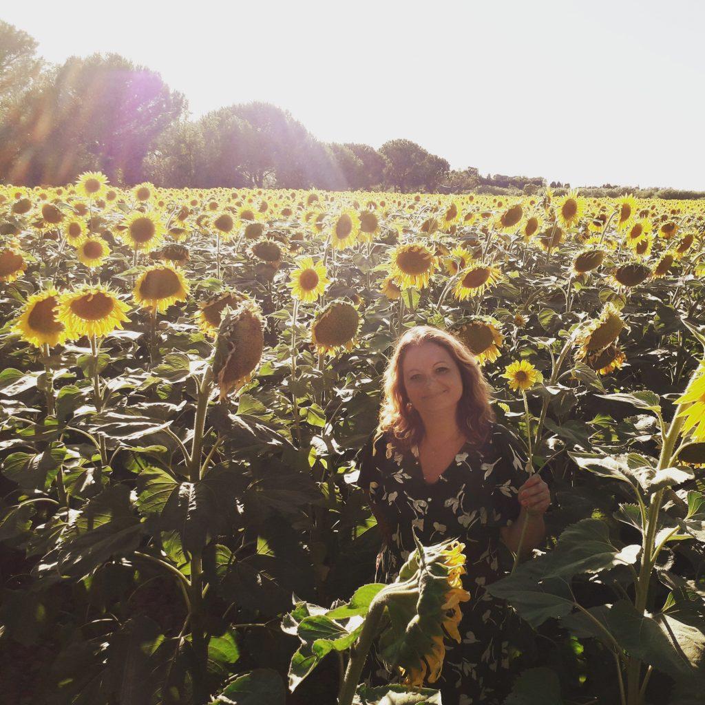 Sonnenblumenfeldgr